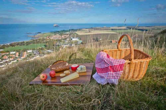 Picnic with a scenic view