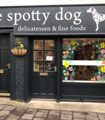 The Spotty Dog