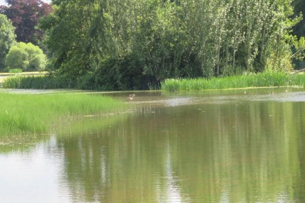 The Lake at Mellertstain