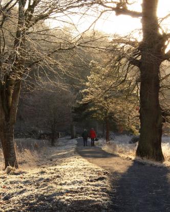 Walks at Abbotsford