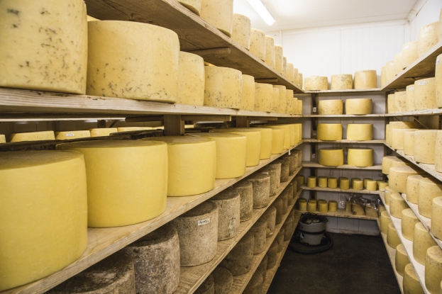 St. Andrew's Farmhouse cheeses