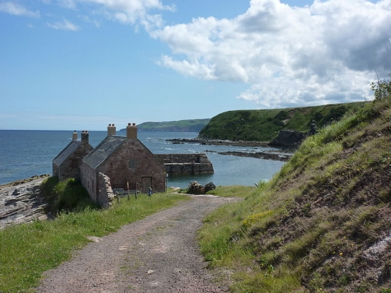 Walk the winding path to Cove Harbour...