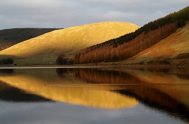 Sunset on Nether Hill at Loch of the Lowes