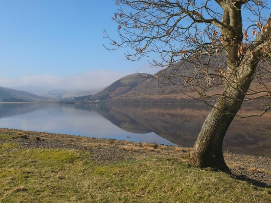 View of St. Mary's Loch at Bowerhope
