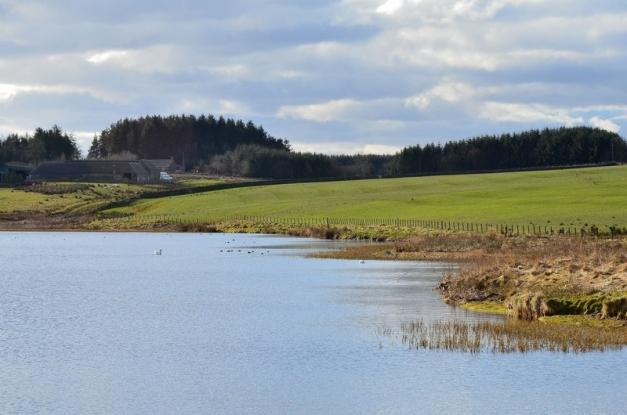 Williestruther Loch